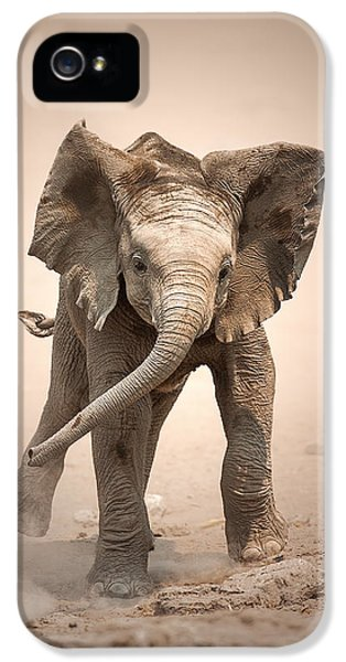 Baby Elephant Mock Charging IPhone 5 Case by Johan Swanepoel