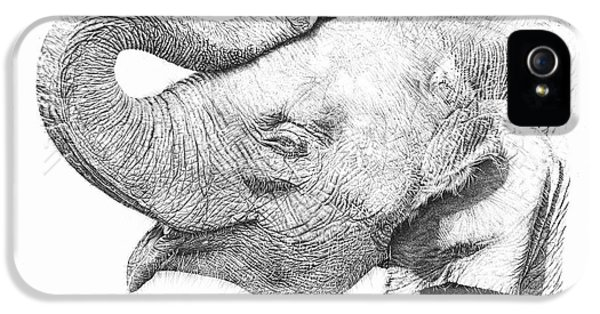 Baby Elephant IPhone 5 Case by Remrov