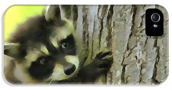 Baby Raccoon In A Tree IPhone 5 Case by Dan Sproul