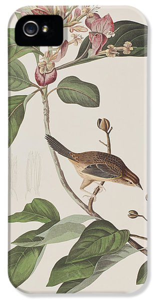 Bachmans Sparrow IPhone 5 / 5s Case by John James Audubon