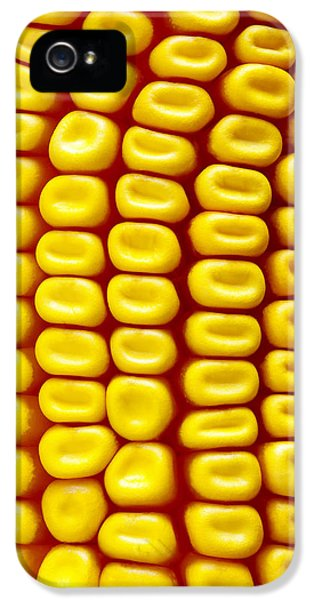 Background Corn IPhone 5 Case