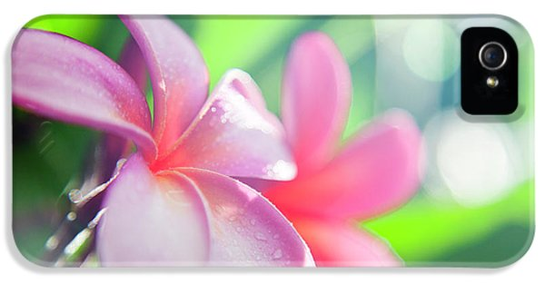 Backlit Plumeria. IPhone 5 Case by Sean Davey