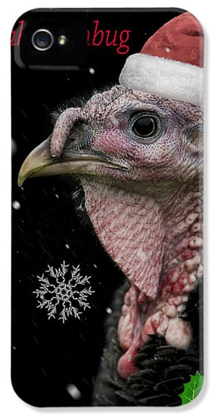 Turkey iPhone 5 Case - Bah Humbug by Paul Neville