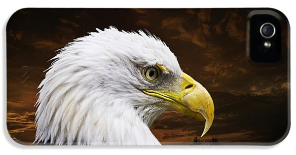 Bald Eagle - Freedom And Hope - Artist Cris Hayes IPhone 5 / 5s Case by Cris Hayes