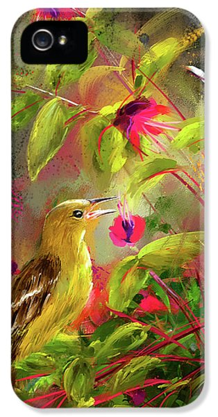 Baltimore Oriole Art- Baltimore Female Oriole Art IPhone 5 / 5s Case by Lourry Legarde