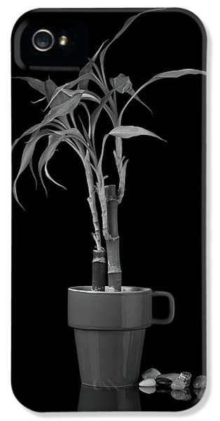 Bamboo Plant IPhone 5 Case