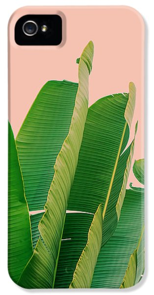 Banana Leaves IPhone 5 Case by Rafael Farias