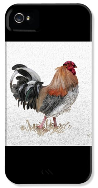 Rooster iPhone 5 Case - Barnyard Boss by Lois Bryan