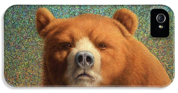 Bearish IPhone 5 Case by James W Johnson
