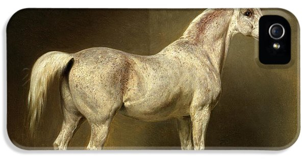 Horse iPhone 5 Case - Beatrice by Carl Constantin Steffeck