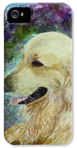 IPhone 5 Case featuring the painting Beautiful Golden by Claire Bull