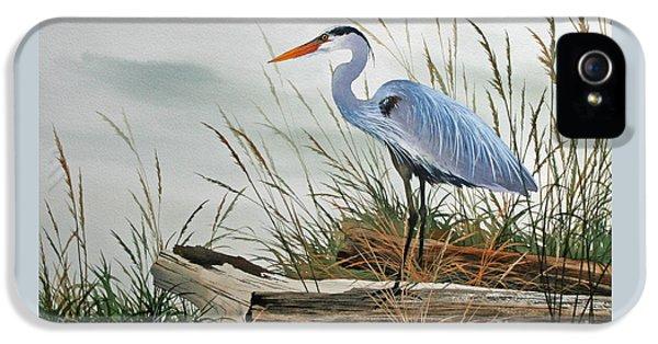 Heron iPhone 5 Case - Beautiful Heron Shore by James Williamson