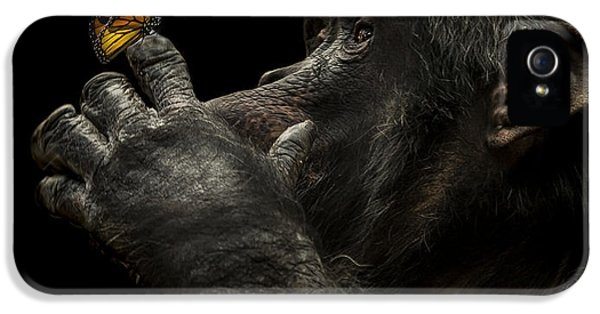 Ape iPhone 5 Case - Beauty And The Beast by Paul Neville