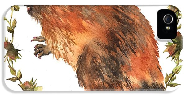 Beaver Painting IPhone 5 / 5s Case by Alison Fennell
