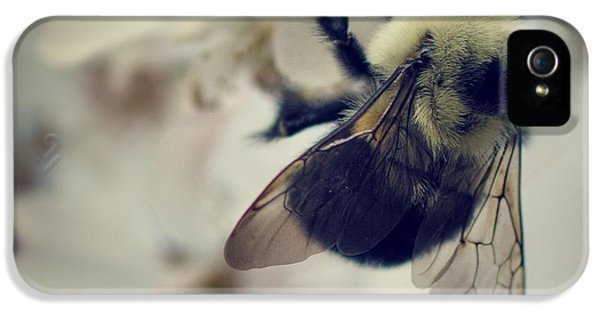 Bee IPhone 5 Case by Sarah Coppola