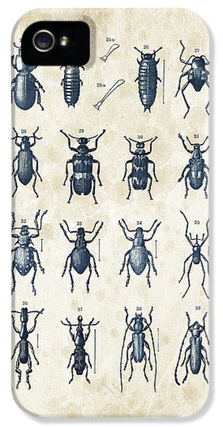 Beetles - 1897 - 03 IPhone 5 Case by Aged Pixel