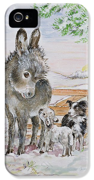 Best Friends IPhone 5 Case by Diane Matthes