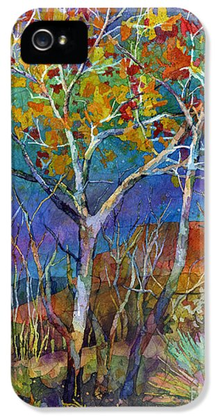 Beyond The Woods IPhone 5 Case by Hailey E Herrera