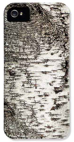 IPhone 5 Case featuring the photograph Birch Tree Bark by Christina Rollo