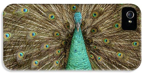 Peacock IPhone 5 Case by Werner Padarin