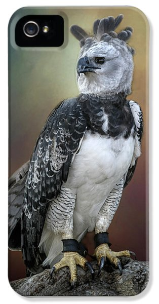 Harpy Eagle iPhone 5 Case - Bird Of Prey by David and Carol Kelly