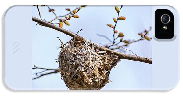 IPhone 5 Case featuring the photograph Birds Nest by Christina Rollo