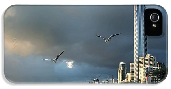 Featured Images iPhone 5 Case - Birds Of Paradise by Az Jackson