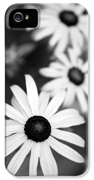 IPhone 5 Case featuring the photograph Black And White Daisies by Christina Rollo