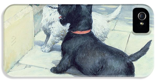 Black And White Dogs IPhone 5 Case