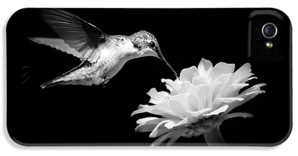 IPhone 5 Case featuring the photograph Black And White Hummingbird And Flower by Christina Rollo