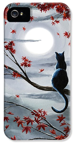 Black Cat In Silvery Moonlight IPhone 5 Case by Laura Iverson