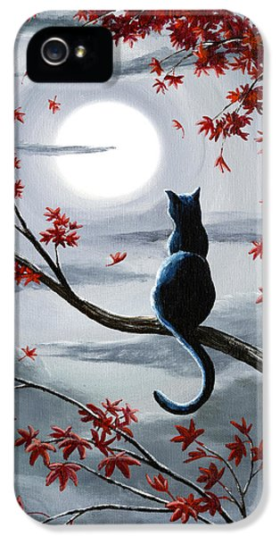 Black Cat In Silvery Moonlight IPhone 5 Case