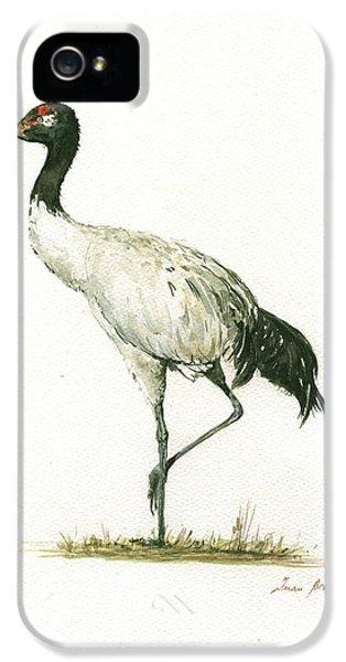 Crane iPhone 5 Case - Black Necked Crane by Juan Bosco