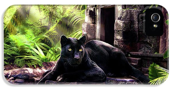 Panther iPhone 5 Case - Black Panther Custodian Of Ancient Temple Ruins  by Regina Femrite