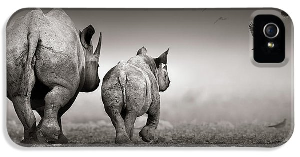 Dove iPhone 5 Case - Black Rhino Cow With Calf  by Johan Swanepoel