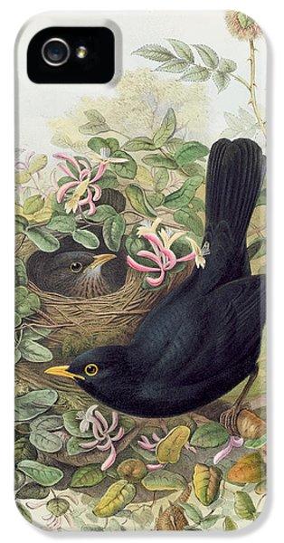 Blackbird,  IPhone 5 Case