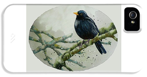 Blackbird Painting IPhone 5 Case by Alison Fennell