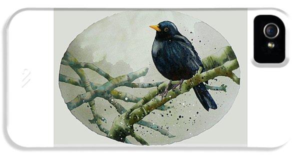 Blackbird Painting IPhone 5 Case