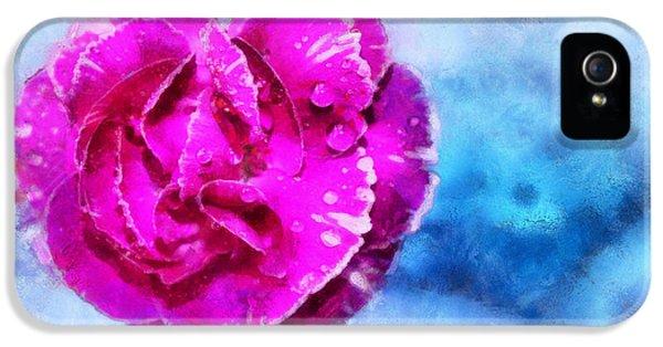 Blissful Pink IPhone 5 Case by Krissy Katsimbras