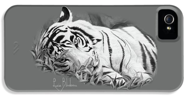 Blue Eyes - Black And White IPhone 5 / 5s Case by Lucie Bilodeau
