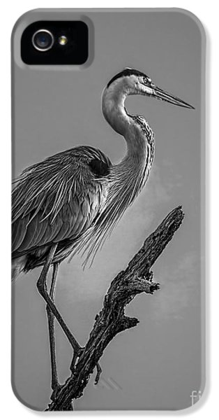 Blue In Black-bw IPhone 5 Case by Marvin Spates