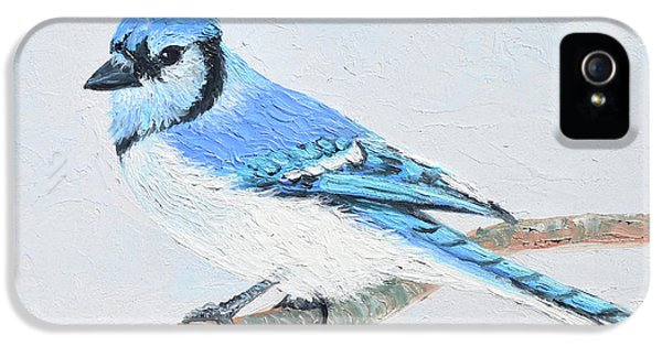 Blue Jay IPhone 5 Case
