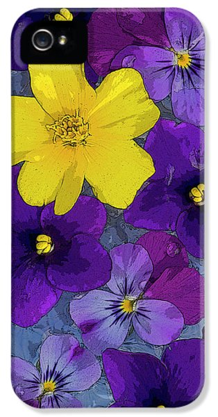 Fairy iPhone 5 Case - Blue Pond by JQ Licensing