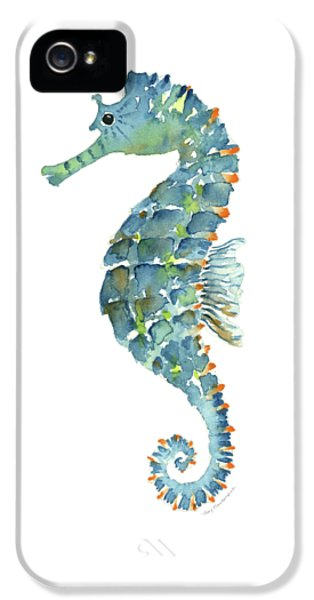 Blue Seahorse IPhone 5 Case by Amy Kirkpatrick