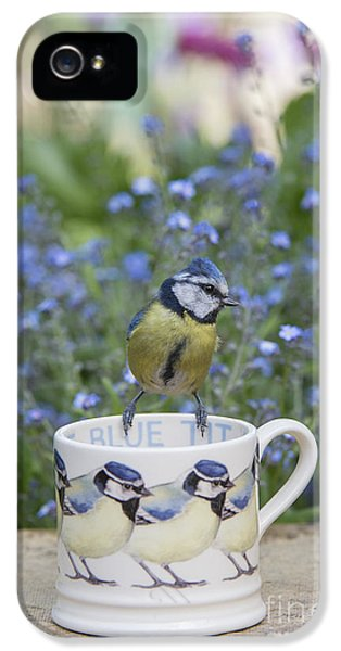 Titmouse iPhone 5 Case - Blue Tit Mug by Tim Gainey