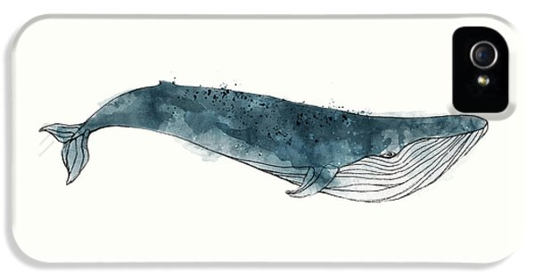 Blue Whale From Whales Chart IPhone 5 Case