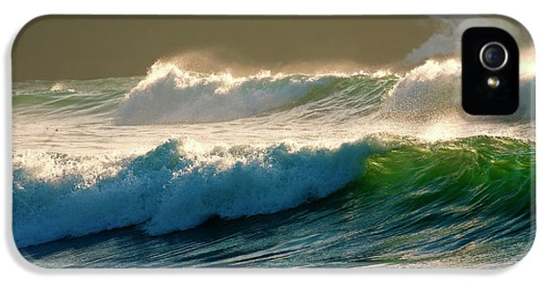 Oregon Coast iPhone 5 Cases - Boiler Bay Waves Rolling iPhone 5 Case by Mike  Dawson