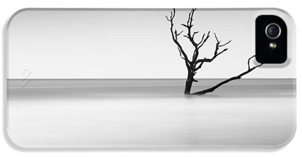 Bull iPhone 5 Case - Boneyard Beach I by Ivo Kerssemakers