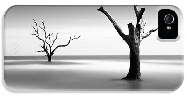 Bull iPhone 5 Case - Boneyard Beach V by Ivo Kerssemakers