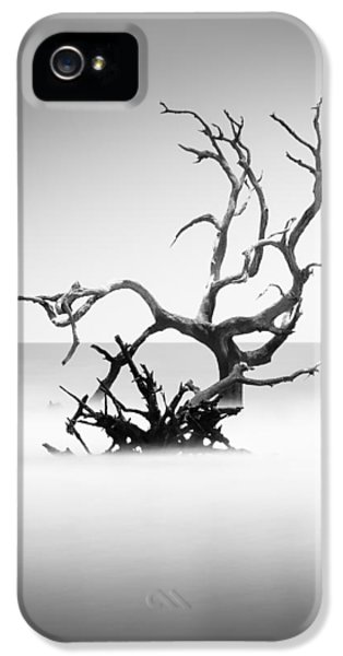 Bull iPhone 5 Case - Boneyard Beach X by Ivo Kerssemakers